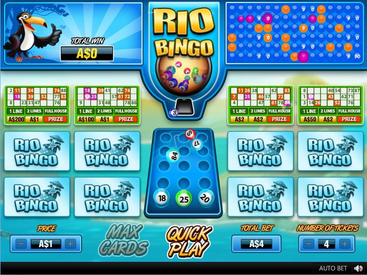 Rio Bingo playing the game