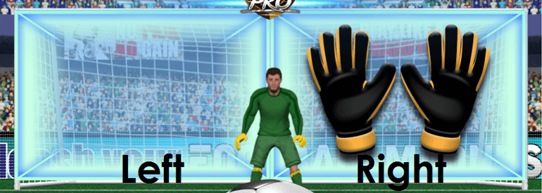 Football Madness Pro Football net during defending